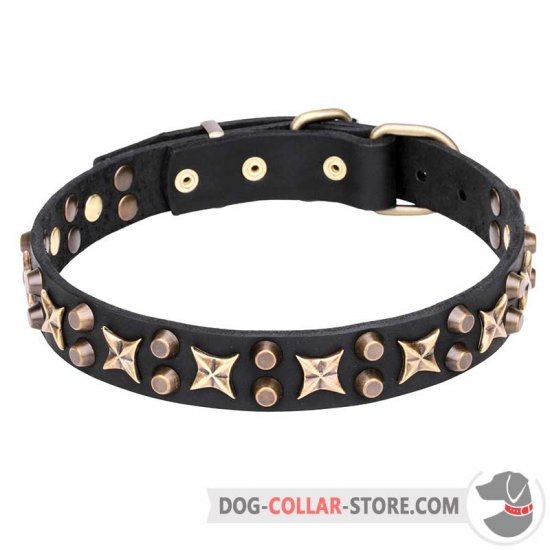 """Hollywood Star"" 1 1/4 inch (30 mm) Leather Dog Collar with Brass Fineries"