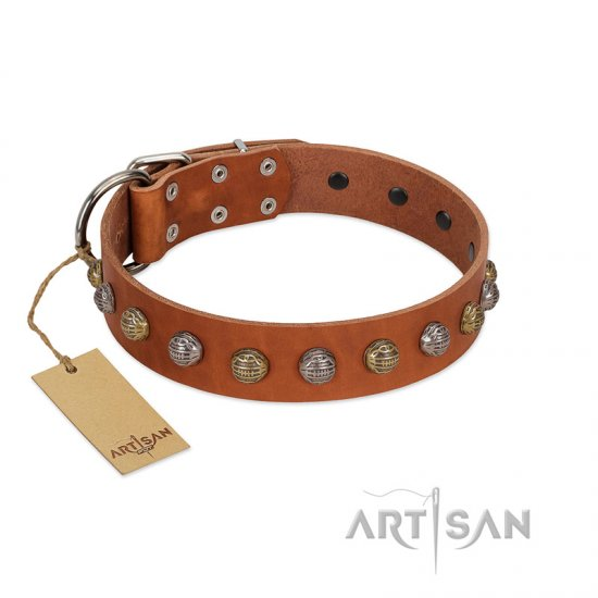 """Dogue-Vogue"" FDT Artisan Tan Leather dog Collar with Engraved Chrome-plated Studs"