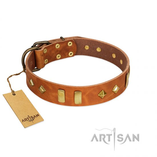 """Woofy Dawn"" FDT Artisan Tan Leather dog Collar with Plates and Rhombs"