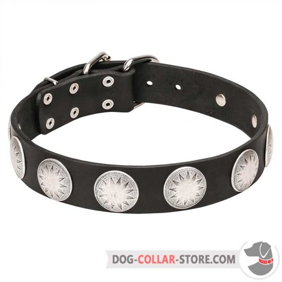 """Maya Indians"" Leather Dog Collar with Chrome Plated Starry Circles"
