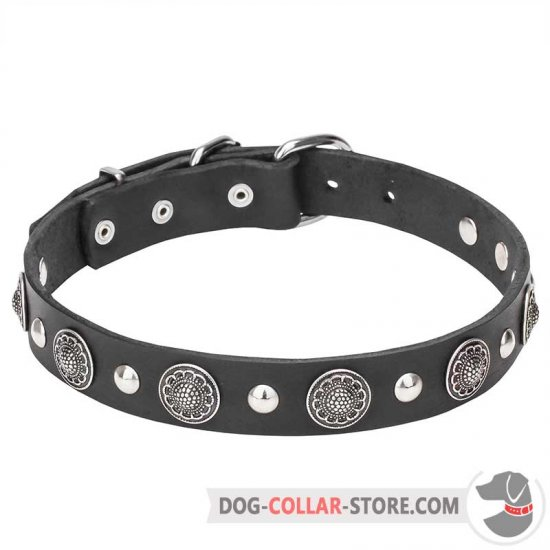 """Shiny Charm"" 1 1/5 inch (30 mm) wide Dog Collar with Chrome Conchos and Half-Ball Studs"