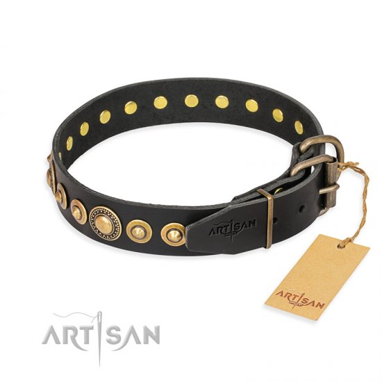 """Gold Mine"" FDT Artisan Black Leather dog Collar with Amazing Bronze-Plated Round Studs"