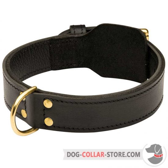 Heavy Duty Training Leather Dog Collar