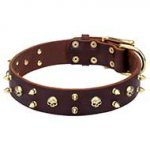 'Hard Rock' Decorative Leather Dog Collar with Brass Skulls and Spikes