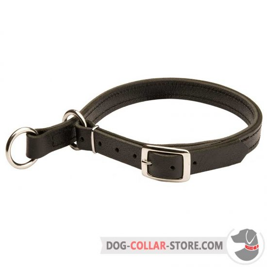 Leather Dog Choke Collar with Buckle