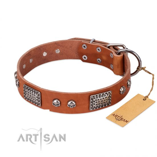 """Sparkling Skull"" FDT Artisan Tan Leather dog Collar with Old Silver Look Plates and Skulls"