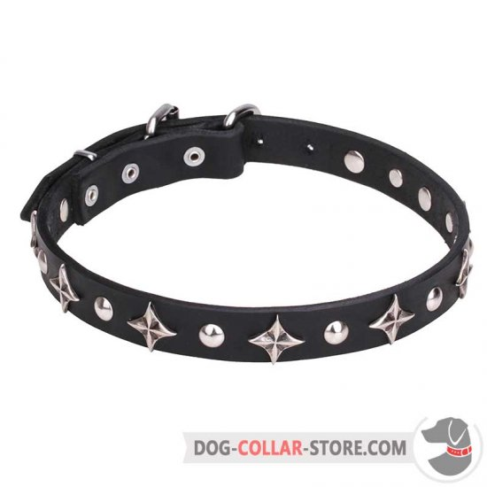 """Pleiades"" 4/5 inch (25 mm) Dog Collar with Chrome Plated Fineries"