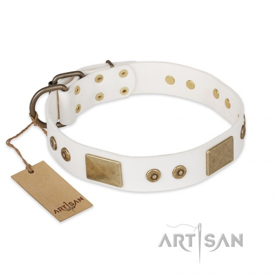"""Unforgettable Impress"" FDT Artisan Decorated Leather dog Collar with Decorations"
