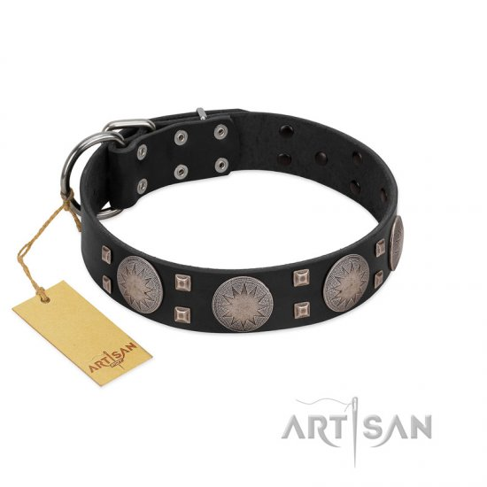 """Sun in Shining"" Modern FDT Artisan Black Leather dog Collar with Studs and Stars"