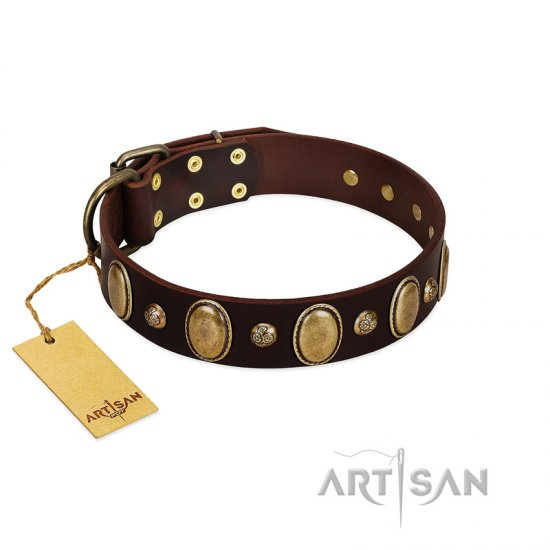 """Natural Grace"" FDT Artisan Handmade Decorated Brown Leather dog Collar"