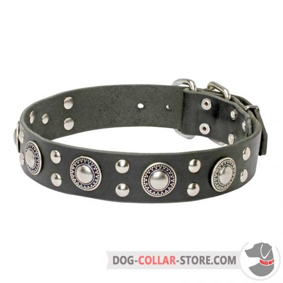 'Rock n Roll' Leather Dog Collar with Awesome Decorations