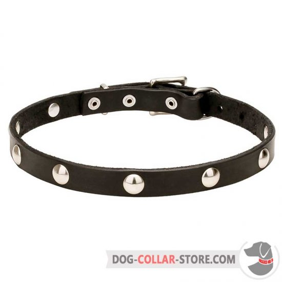'Shiny Necklace' Leather Dog Collar Trendy Design
