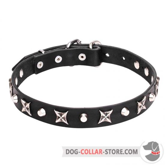 """Blazing Stars"" 4/5 inch (25 mm) Decorated Leather Dog Collar"