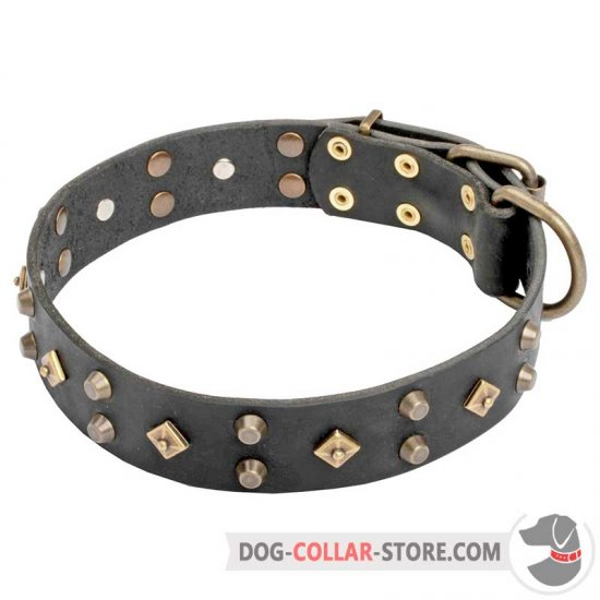 'Egypt Treasure' Leather Dog Collar 1 1/2 inch (40 mm) Wide