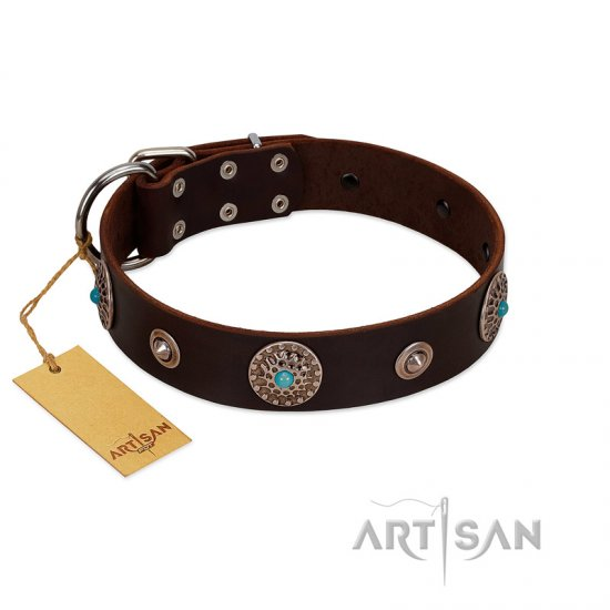 """Magic Stones"" FDT Artisan Brown Leather dog Collar with Chrome Plated Brooches and Studs"