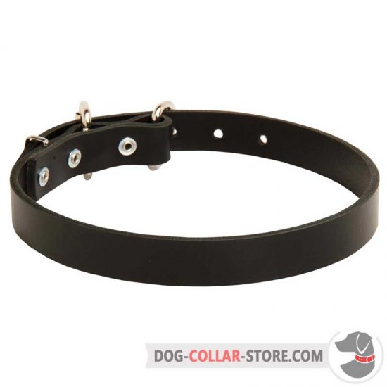 Classy Buckled Leather Dog Collar for Daily Use
