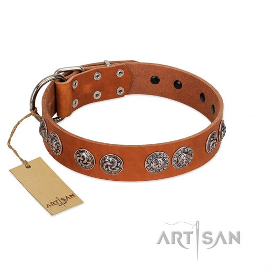 """Woofy Majesty"" FDT Artisan Tan Leather dog Collar with Round Silver-like Plates"