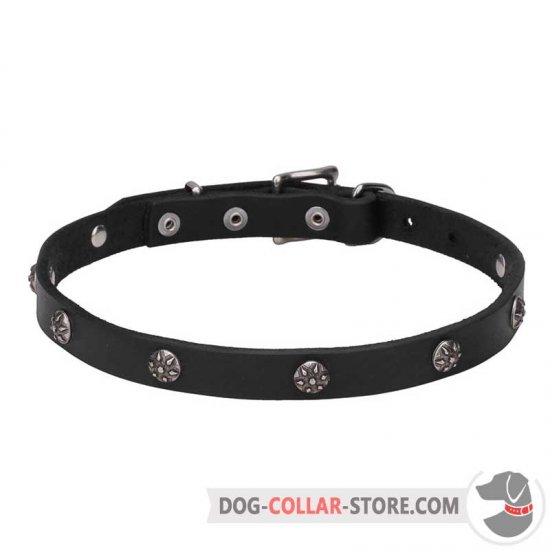 'Sparkling Beauty' Leather Dog Collar with Engraved Studs