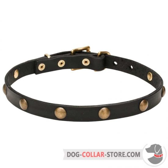 'Elegant Beauty' Leather Dog Collar with Brass Half-Ball Studs