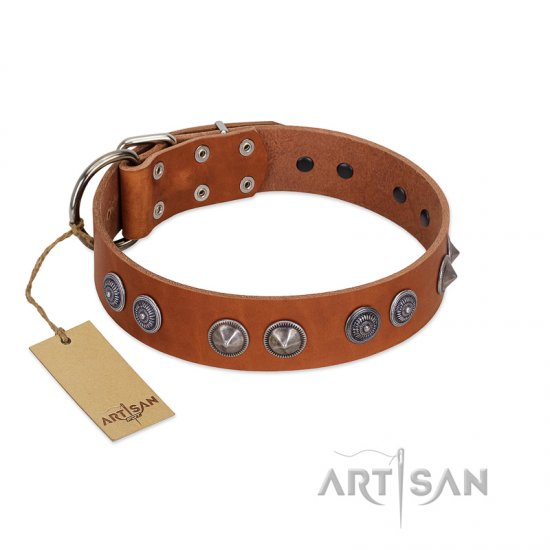 """Silver Necklace"" Incredible FDT Artisan Tan Leather dog Colar with Silver-Like Adornments"