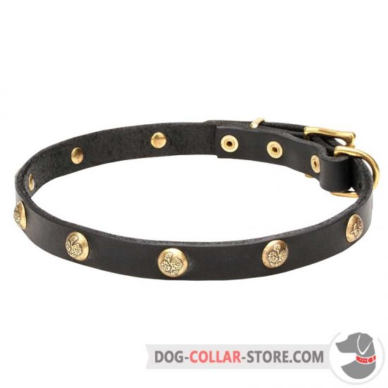 'Stamped Studs' 3/4 Inch Wide Leather Dog Collar