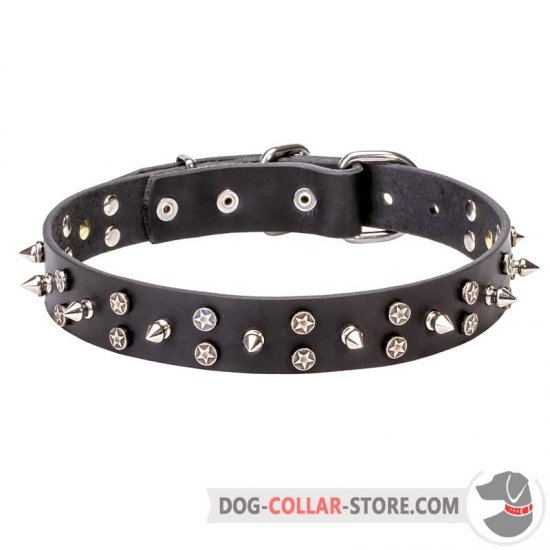 'Star-Studded Sky' Dog Walking Collar with Decorations
