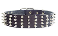 Durable Wide Decorated Leather Dog Collar for Walking