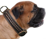 Bullmastiff Handcrafted Leather Dog Collar