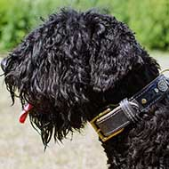 Royal Nappa Padded Leather Black Russian Terrier Collar