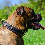 Royal Nappa Padded Leather Boxer Collar with Braids
