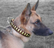 Gorgeous Wide Leather Dog Collar With Plates for shepherd