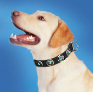 Labrador Leather Dog Collar & Silver Plated Circles Stones