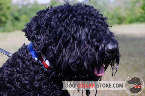 Leather Dog Collar for Black Russian Terrier with Stylish American Flag Painting
