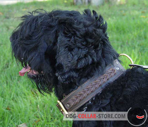 Brown Leather Black Russian Terrier Collar with Braids