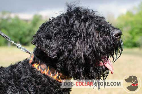 Leather Dog Collar for Black Russian Terrier with Painted Flames Design