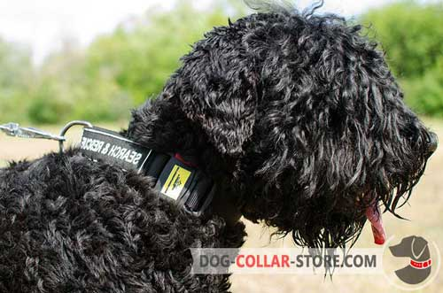 Weather Proof Nylon Black Russian Terrier Collar with ID Patches