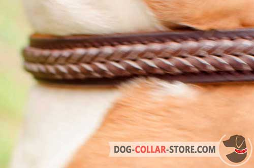 Stylish Hand Made Braiding on Designer Leather Dog Collar