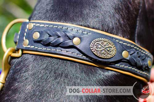Pretty Braids on Exclusive Design Leather Dog Collar