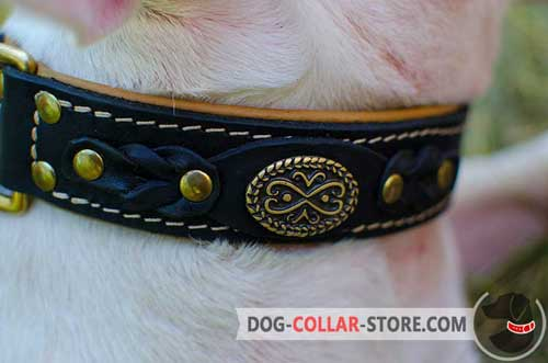 Stylish Brass Brooch and Braided Decoration on Padded Leather Dog Collar