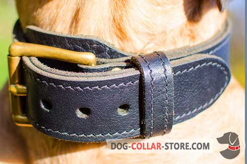 Strong Buckle on 2 Ply Leather Dog Collar