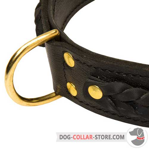 Brass D-Ring on Braided Leather Dog Collar for Lead Attachment