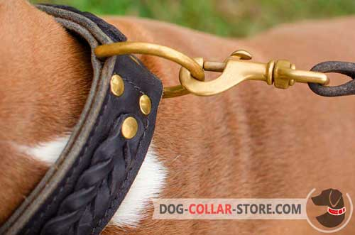 Duly Welded Brass-plated D-Ring on Braided Leather Dog Collar to Attach the Lead