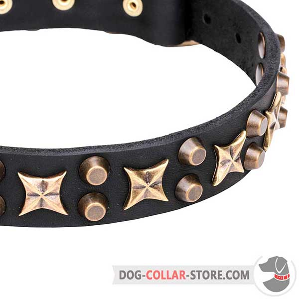 Brass-plated Cones and Stars on Dog Collar