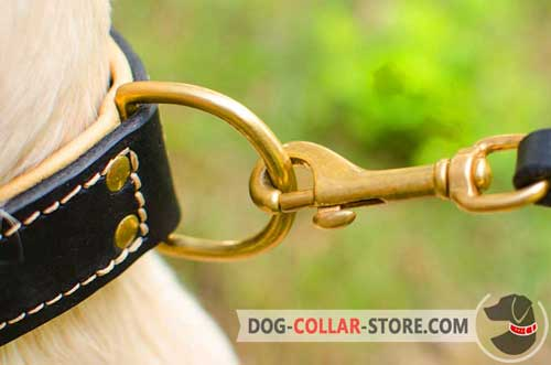 Handset Brass-Plated Hardware On Leather Golden Retriever Collar