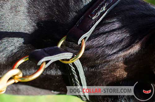 Durable O-Rings on Leather Dog Choke Collar