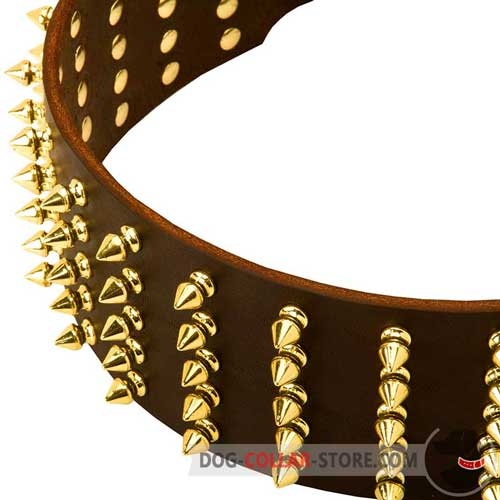 Brass Spikes Set in Five Rows on Leather Dog Collar