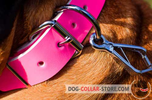 Nickel Plated Buckle And D-Ring On Pink Leather Dog Collar