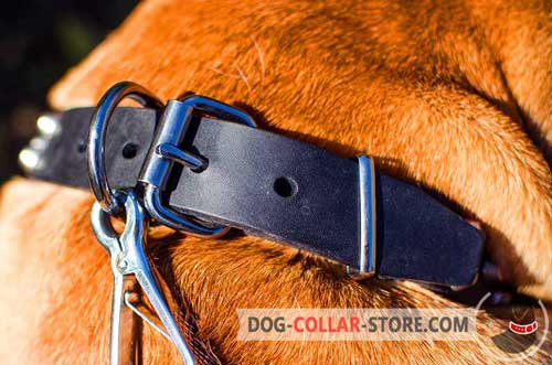 Strong Nickel Buckle And D-ring On Leather Dog Collar