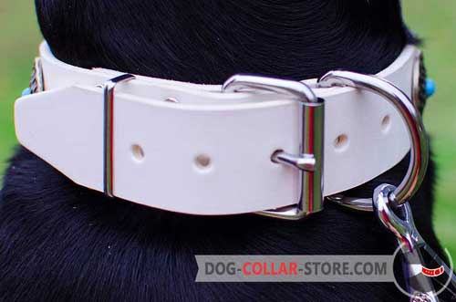 Nickel-Plated Buckle On Leather Dog Collar White