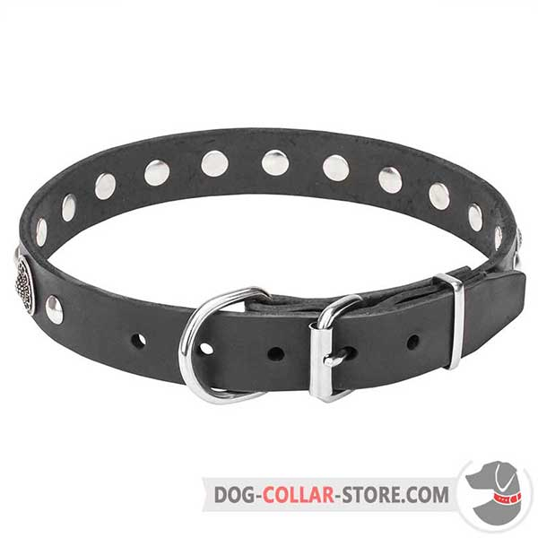 Dog Collar with durable hardware